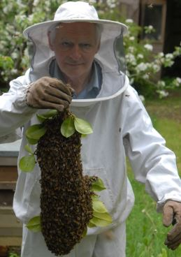 Dr Andrew Szydlo - Bee Keeping