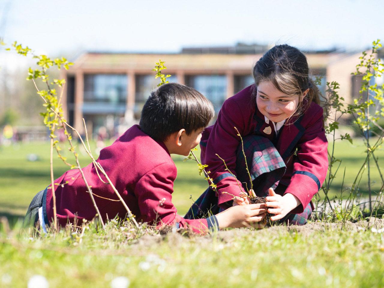 Junior School Tree Planting